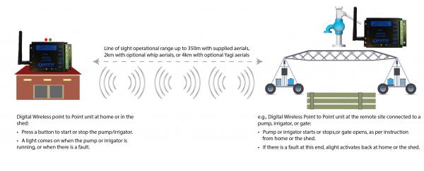 WP2P Digital Application